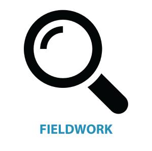 fieldwork-01
